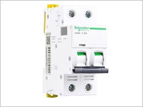 施耐德 微型断路器 IC 65N 2P C25